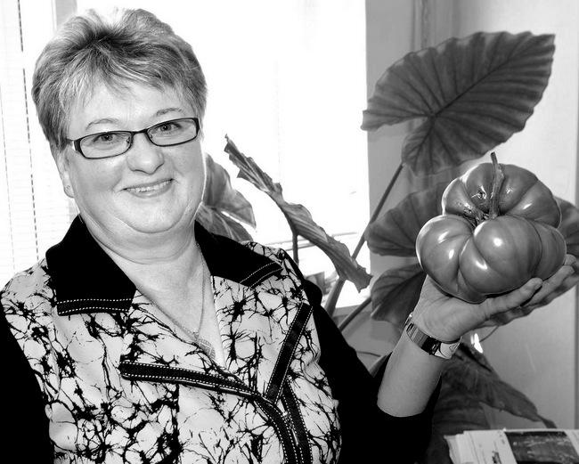 Raubonietės Danguolės Ranonienės šiltnamyje užaugo kilogramą ir šimtą gramų sveriantis pomidoras.