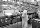 Išlikti rinkoje įmanoma tik tiekiant jai kokybiškus produktus
